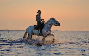 Riding a horse through a body of water.